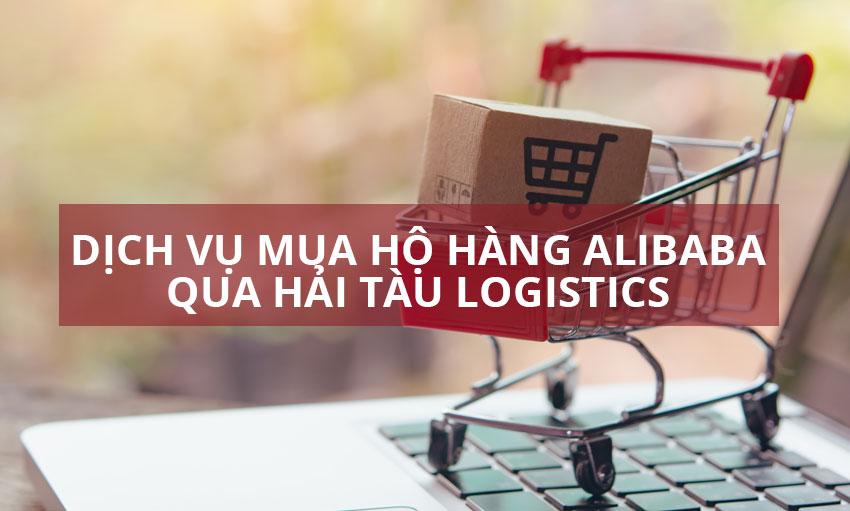Mua hộ hàng Alibaba qua Hải Tàu Logistics